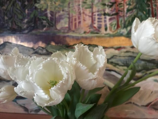 nana's tulips