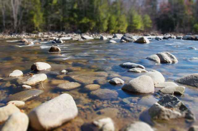 summer-rocks-trees-river.jpg